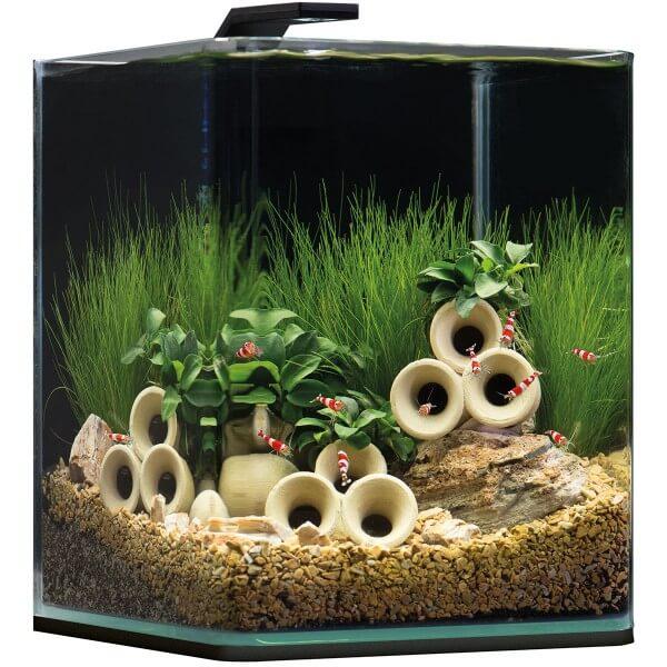10 Liter Aquarium